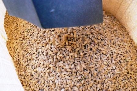 稲の脱穀 : 百一姓blog