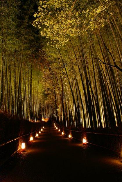 違う角度からもう一枚どうぞTags:#京都 #夜景   京都の風になって