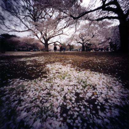 ピンホール写真 Pinhole Photography 旅(非日常)と日常(現実)