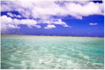 天国はここにある友人が働く「天国の海ツアー」に行ってきました。車はオアフ... 天国の海へようこ