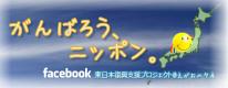 """Facebook""""えがおのタネ""""ページ"""