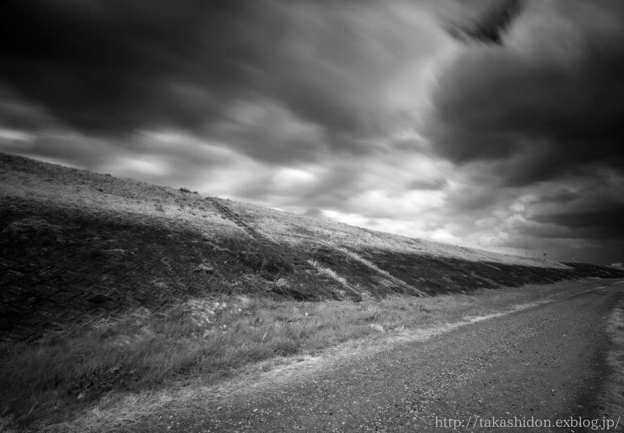 にほんブログ村 写真ブログ デジタル一眼(Canon)へ 今日のうどん県は終日暴風が吹き荒れまし