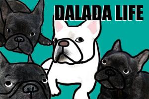 Dalada life